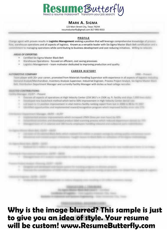 resume makeover after resume butterfly com manager six sigma - Small Business Owner Resume