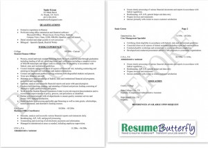 Resume Makeover - BEFORE - Resume Butterfly com - Finance