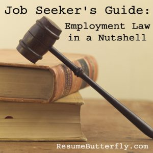 Job Seeker Guide Employment Law in a Nutshell - ResumeButterfly Job Search Advice